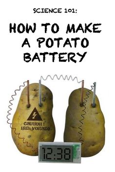 While you might only associate potatoes with eating, there is another awesome use for them: they can act as a small battery! Shock everyone in the room by pulling off this fun trick, whether you're in need of a science fair project or you just want to entertain the kids at home. All you need is a potato, a piece of heavy copper wire, a steel nail, a zinc-plated nail, a small piece of sandpaper, and a voltmeter. Head to eBay for the step-by-steps to build your very own potato battery.