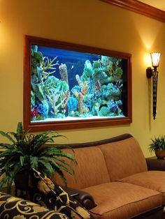 fish tank designs for living room large aquarium with stone edges ideas integrate aquarium designs in.fish tank in living room small fish tank… Aquarium Design, Home Aquarium, Aquarium Fish Tank, Aquarium Ideas, Fish Aquariums, Aquarium Decorations, Saltwater Aquarium, Fish Tank Wall, Living Room Designs
