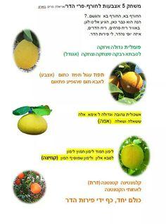 poems for rosh hashanah