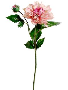 """Dahlia Spray in Two-Tone Mauve Pink with Peach Highlights - 19.5"""" Tall"""
