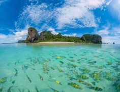 Koh Poda is one the most popular islands in Krabi archipelago. Located just six kilometres offshore from Ao Nang, it roughly takes 25 minutes to get there by long-tail boat. Krabi Island, Ao Nang, Archipelago, Phuket, Bangkok, Boat, Water, Outdoor, Animals