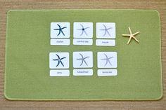 Montessori Learning - Using Montessori Parts of 3-part cards to Explore Anatomy