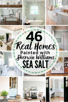 Sherwin Williams Sea Salt Is it the perfect paint shade for your home? Let's find out. Coastal Paint Colors, Farmhouse Paint Colors, Interior Paint Colors, Paint Colors For Home, Coastal Color Palettes, Warm Paint Colors, Stain Colors, Sherman Williams Sea Salt, Sea Salt Sherwin Williams