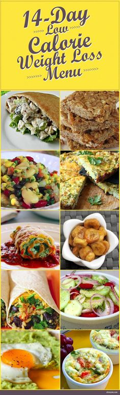 14 Day Low Calorie Weight Loss Menu--great for weight loss or maintenance! #healthy #recipes #lowcalorie #recipes