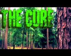 The Cure — A forest