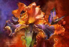 Кэрол Каваларис и ее цифровая живопись (27 фото)