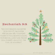 Zechariah 9:9 Merry Christmas