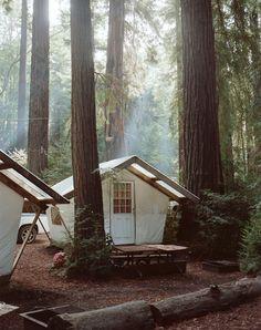 #Glamping en forêt