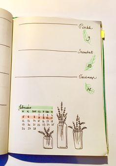 Weakly spread • Bullet journal • bujo • february • doodle • plants