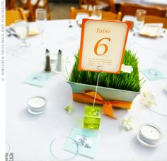 Each table card carried a fun fact about the bride & groom and was placed in a bright green holder. Guests enjoyed taking a peek at each fact during the reception.