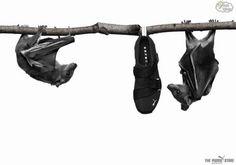 Batsports (Puma)
