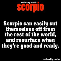 Scorpio escaping from the world.- thank you Internet for justifying my life.