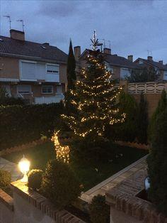 Luces de jardín cálidas. Decoración exterior Navidad. Christmas decoration. Warm light