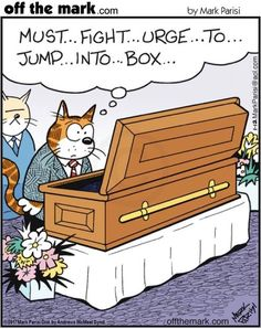 Funeral jokes. Off the mark comics