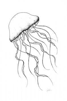 tattoo drawings simple #tattoo drawings simple #tattooideas #tattoodesigns Jellyfish Drawing, Jellyfish Painting, Jellyfish Tattoo, Watercolor Jellyfish, Jellyfish Quotes, Jellyfish Aquarium, Jellyfish Sting, Tattoo Watercolor, Jellyfish Light