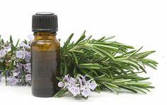 Primer on Essential Oils