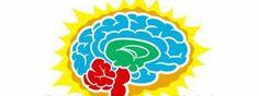 zhannadesign: How The Brain Works