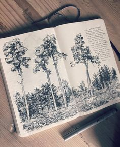 Pine trees in the woods behind our home. Walking almost everyday through the forest with the little ones, here we did a short stop and I finish the drawing later at home. #tree #sketch in my #moleskine #sketchbook (hier: Bern)