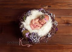 Spring Flower Newborn Nest, Newborn Photography Prop. wish they posted to Aus