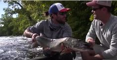 Fly Fishing Muskies great experience in Hayward , Wisconsin
