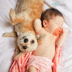 oooh!! this will SO be our dog & baby some day!