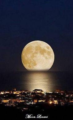 Full Moon ~ Florianopolis, Brazil I love the moon, especially when full. Beautiful Moon, Beautiful World, Beautiful Places, Beautiful Pictures, Stars Night, Shoot The Moon, Moon Pictures, Moon Pics, Image Nature