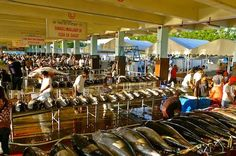 Giant Tuna Fish at Market 1 of General Santos Fish Port Complex