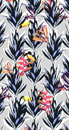 Animal toucan   www.lab333.com  https://www.facebook.com/pages/LAB-STYLE/585086788169863  http://www.labs333style.com  www.lablikes.tumblr.com  www.pinterest.com/labstyle