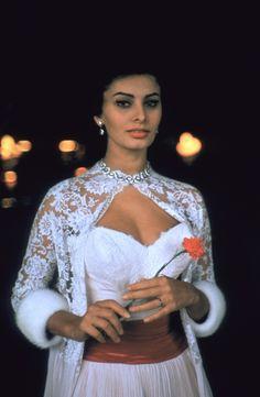 Sophia Loren - another 1957 Italian Beauty, Italian Women, Couple Avatar, Loren Sofia, Rachel Welch, Sophia Loren Images, Himiko Toga, Retro Vintage, Vintage Vogue