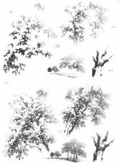 Plate 9 - James Duffield Harding (1798-1863)