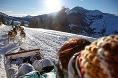 Les joies de la glisse avec les chiens de traineau en Andorre #andorre #travelski