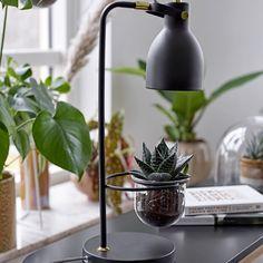 Solar Rotatable Garden LED Light Lamp Bulb Décor Noël Halloween imperméable KK