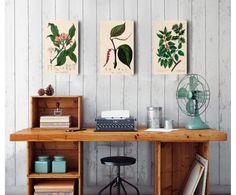 Set de 3 impresiones sobre madera Nature, multicolor - 20x32 cm