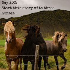 "Day 200 of 365 Days of Writing Prompts: Start this story with three horses. Shannon: ""Three horses stand before you. Each will determine your next destination, as well as your future. Please choose…"