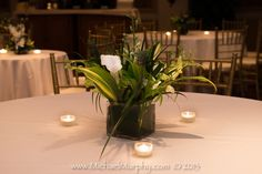 At a Polynesian-themed wedding reception held at the historic Riverside Hotel in Ft. Lauderdale, a simple centerpiece of calla lilies, beach grass, and orchids is surrounded by tea lights for a soft glow against a white table cloth and gold chairs. The John Parker Band had the honor of playing for this elegant luau event, and even shared the stage with a ukelele soloist for the couple's first dance! http://www.jpband.com/weddings/
