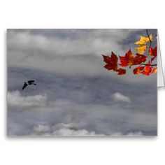 A pair of canada geese wing their way through a handpainted cloudy sky with a brilliant maple in full color punctuating the image from the upper right corner. This image contains elements of both photography and water color painting. The images output are printed with archival inks made from a base image. Base image 