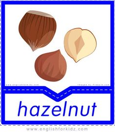 Hazelnut - English flashcards for the fruits and vegetables topic Food Vocabulary, English Vocabulary, Name Of Vegetables, English Lessons For Kids, Nursery School, Children With Autism, Printable Worksheets, Student Learning, Game Design