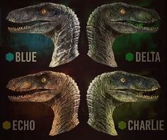 jurassic world fan. me: and that 1 there is blue, she the beta. kid: who's the alpha?) jurassic world fan. me: and that 1 there is blue, she the beta. kid: who's the alpha? Jurassic World Park, Jurassic Park Poster, Jurassic World Raptors, Jurassic Movies, Jurassic World Fallen Kingdom, Velociraptor Jurassic Park, Jurassic Park Costume, Jurassic World Characters, Chiara Bautista