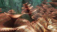 #Plante en #spirale dans #avatar