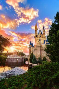 Disney World Cast Members