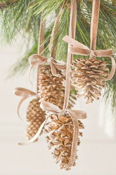 New diy christmas tree decorations rustic pine cones ideas Pine Cone Christmas Tree, Noel Christmas, Outdoor Christmas, Rustic Christmas, Natural Christmas Tree, White Christmas, Christmas Trees, Christmas Lights, Pinecone Ornaments