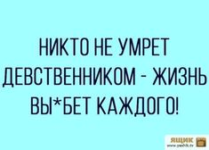 Smart Humor, Russian Humor, 3am Thoughts, Funny Phrases, Truth Of Life, Life Philosophy, Funny Stories, Common Sense, Sarcasm