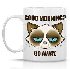 good morning grumpy cat - Recherche Google