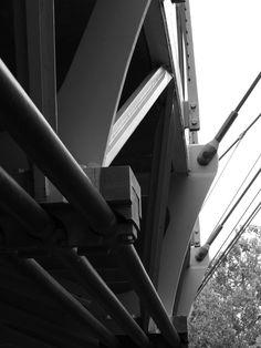 Liberty Bridge at Falls Park. Greenville, SC.