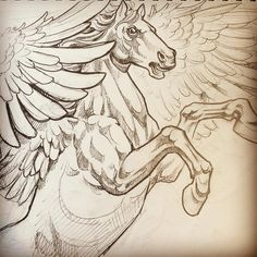 Pegasus for today. I'll be drawing the background on the skin.