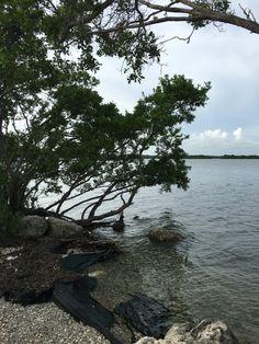 Biscayne National Park, Florida Florida Sunshine, Sunshine State, Biscayne National Park, American National Parks, Mangrove Forest, Gulf Of Mexico, Atlantic Ocean, Acre, Island