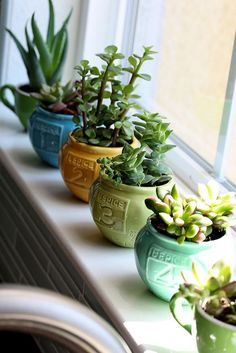 Spice containers from Anthro used as mini pots. #succulents #house plants