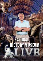 In this ground-breaking film, Sir David Attenborough takes us on a journey through the world-famous. 3d Film, David Attenborough, Natural History Museum, Documentary, Adventure, Cgi, Art School, Discovery, Nature