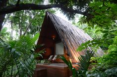 Tired of those overpriced and monotonous hotels/lodges offering the unchanged facet of hospitality? Plunge into this one of a kind eco-tourism dashed with sustainable tourism bragging a memorable staycation you can talk about. The concept is simple: connect humans to nature and thus giving an opportunity to relax and rejuvenate by listening to the rhythmic sound of nature. As wind scrapes its way through the leaves of trees, this tune and cord of nature, makes you feel the verve & vitality.