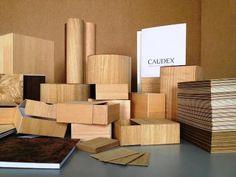 """I makers Stecca e Pivato, inventori del Caudex, la prima """"carta di legno"""" green"""